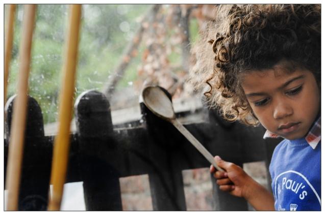 Wooden spoon instrument