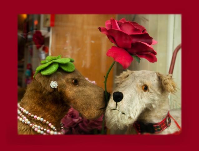 Poppy & Rose Shop